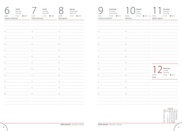 Naptár, tervező, A5, heti, DAYLINER, Colors, fashion