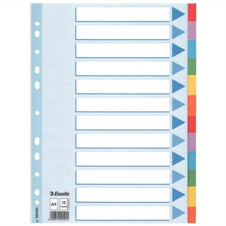 Regiszter, karton, A4, 12 részes, írható előlappal, ESSELTE Standard, színes