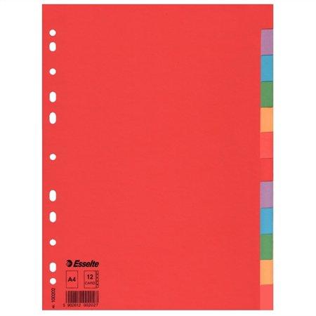 Regiszter, karton, A4, 12 részes, ESSELTE Economy, színes